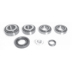 DS 1421 , BEARING KIT - DIFFERANTIAL